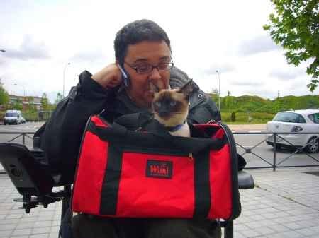 gato y discapacitado