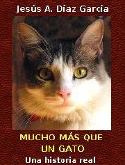 portada novela gatos