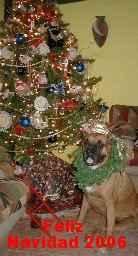 Perrita navideña