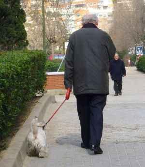 Anciano paseando al perro