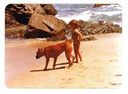 perro y niña en la playa