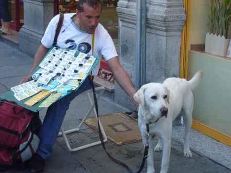 perro lazarillo y su dueño