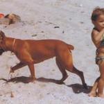 La nobleza y tolerancia del Boxer