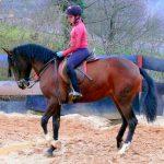 Equitación y doma, La Cascayera, en Boo