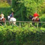 Amigos de los caballos, encuentro realizado