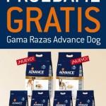 Alimento para perros, gratis, de Advance
