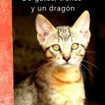 Cuentos de gatos, trenes y un dragón rojo